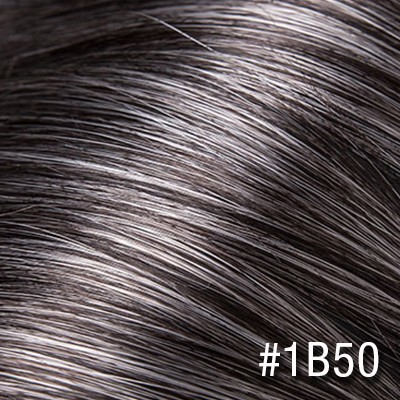 Color #1B50