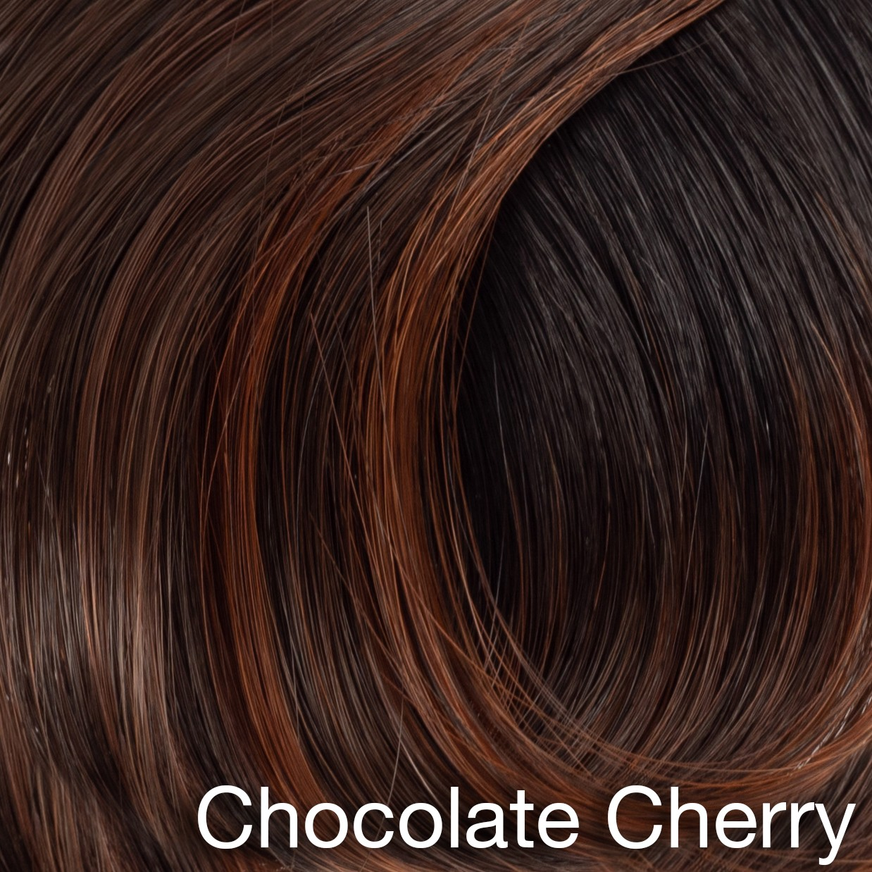 Chocolate Cherry Rooted