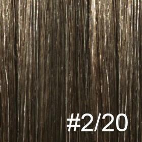 #2/20