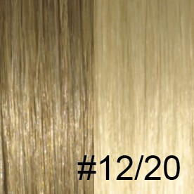 #12/20