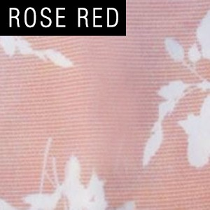 Rose Red Misu