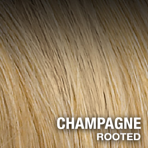 CHAMPAGNE Rooted