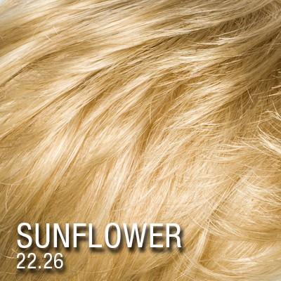 Sunflower #22.26